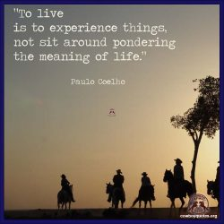 To live is to experience things, not sit around pondering the meaning of life.