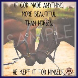If god made anything more beautiful than horses, he kept it for himself.
